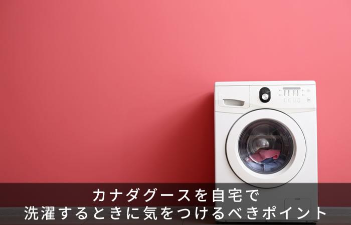 カナダグースを自宅で洗濯するときに気をつけるべきポイント